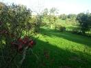 Uitzicht op het dal van Terhorst (beschermd landschapsgebied)